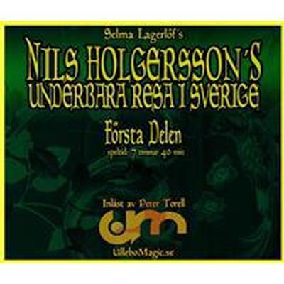 Nils Holgerssons underbara resa (Ljudbok nedladdning, 2016)