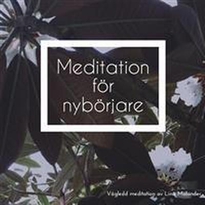 Meditation för nybörjare (Ljudbok nedladdning, 2017)
