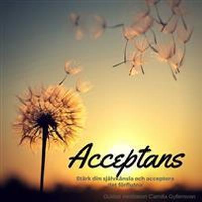 Acceptans (Ljudbok nedladdning, 2017)