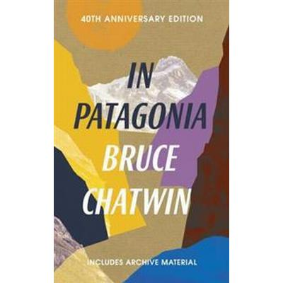 In patagonia - 40th anniversary edition (Pocket, 2017)