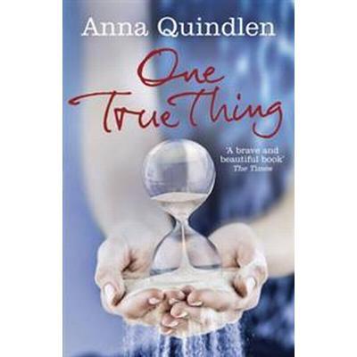 One True Thing (Häftad, 2011)