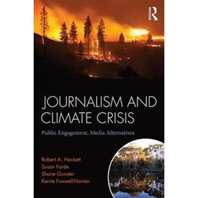 Journalism and Climate Crisis (Pocket, 2017)