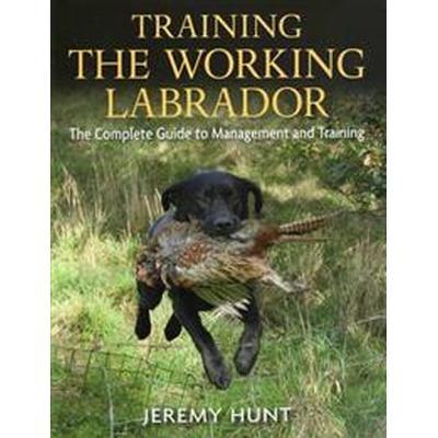 Training the Working Labrador (Inbunden, 2013)