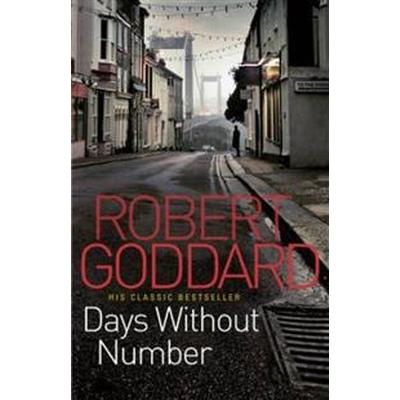 Days Without Number (Häftad, 2011)