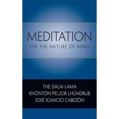 Meditation on the Nature of Mind (Häftad, 2011)