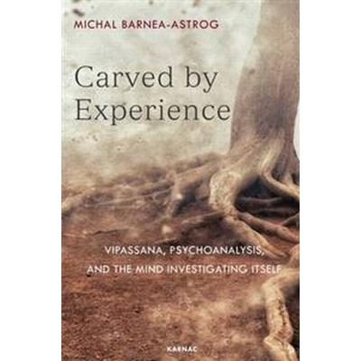 Carved by Experience (Pocket, 2017)