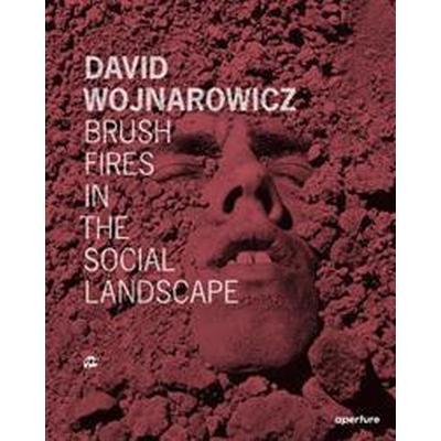 David Wojnarowicz (Inbunden, 2015)