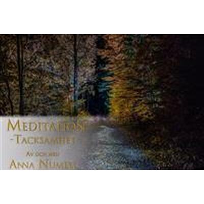 Meditation - Tacksamhet (Ljudbok nedladdning, 2016)