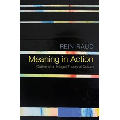 Meaning in Action (Pocket, 2016)