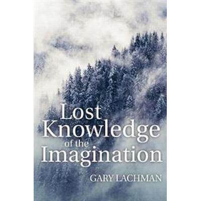 Lost Knowledge of the Imagination (Häftad, 2017)