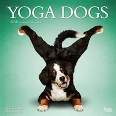 Yoga Dogs 2018 Wall Calendar (Övrigt format, 2017)
