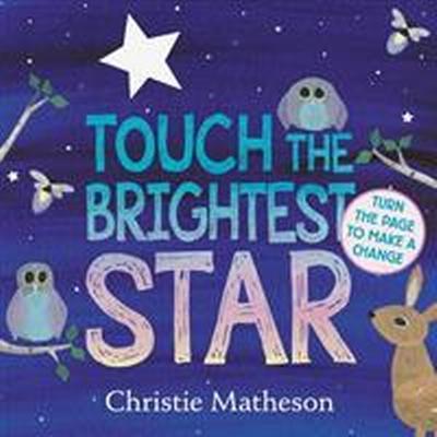 Touch the Brightest Star (Inbunden, 2017)