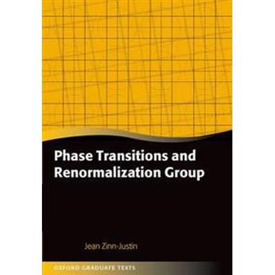 Phase Transitions and Renormalization Group (Pocket, 2013)