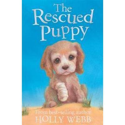Rescued puppy (Pocket, 2011)