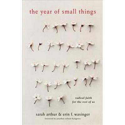 The Year of Small Things: Radical Faith for the Rest of Us (Häftad, 2017)