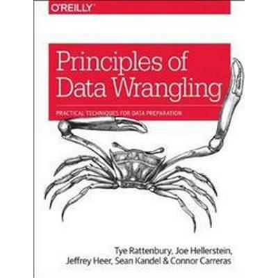 Principles of Data Wrangling: Practical Techniques for Data Preparation (Häftad, 2017)