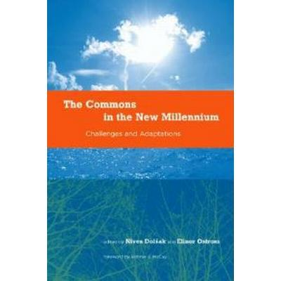 The Commons in the New Millennium (Pocket, 2003)