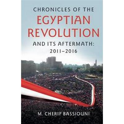 Chronicles of the Egyptian Revolution and Its Aftermath (Pocket, 2016)