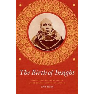 The Birth of Insight (Pocket, 2016)