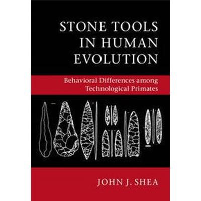 Stone Tools in Human Evolution (Pocket, 2016)