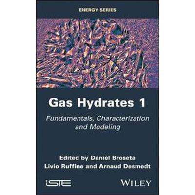 Gas Hydrates: From Characterization and Modeling to Applications (Häftad, 2017)