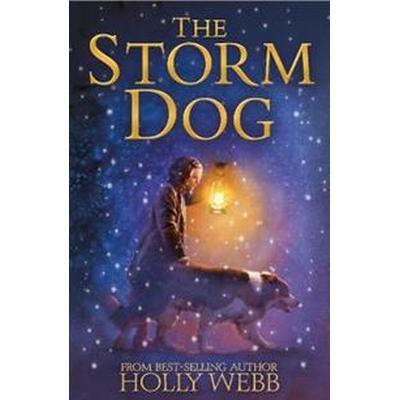 Storm dog (Inbunden, 2017)