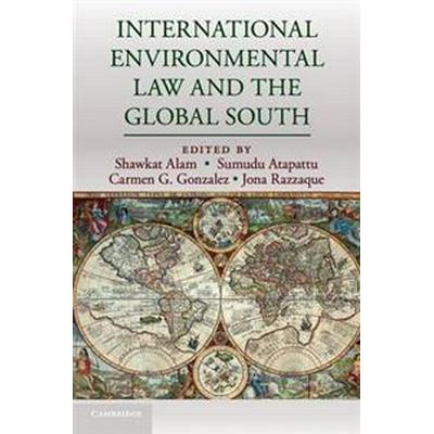 International Environmental Law and the Global South (Häftad, 2017)