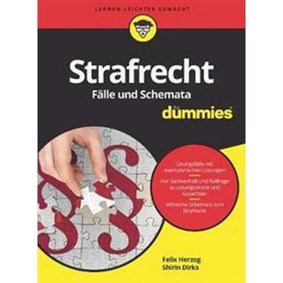 Strafrecht Falle und Schemata fur Dummies (Häftad, 2017)
