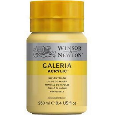 Winsor & Newton Galeria Acrylic Naples Yellow 422 250ml
