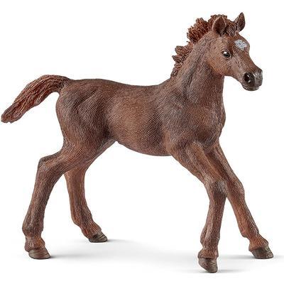 Schleich English Thoroughbred Foal 13857