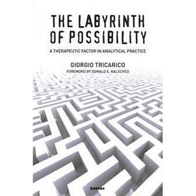 The Labyrinth of Possibility (Pocket, 2014)