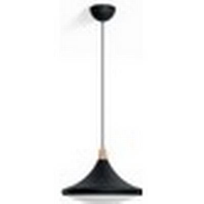 Philips Hook Taklampa