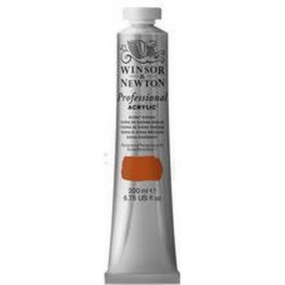 Winsor & Newton Professional Acrylic Burnt Sienna 74 200ml