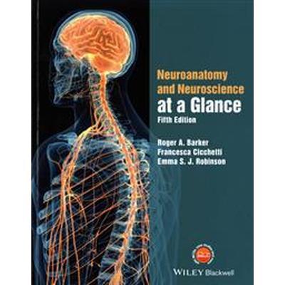 Neuroanatomy and Neuroscience at a Glance (Häftad, 2017)