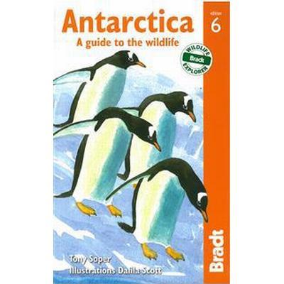 Antarctica (Pocket, 2013)