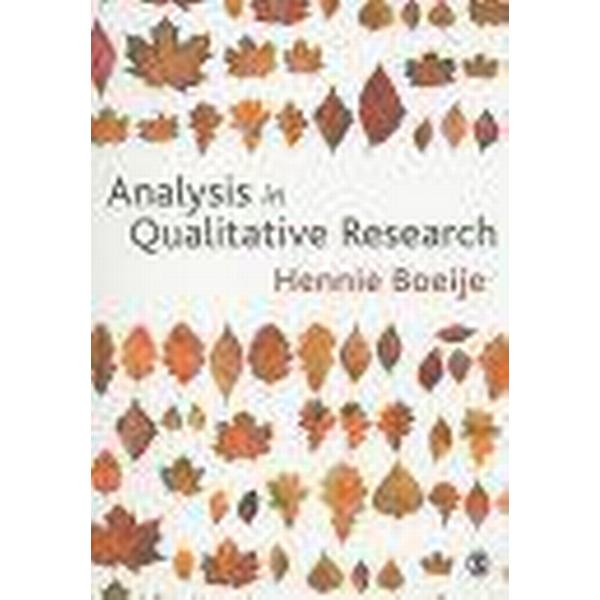 Analysis in Qualitative Research (Pocket, 2009)