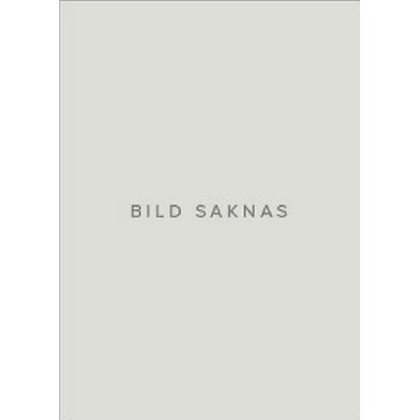 Three Japanese Short Stories (Häftad, 2018)