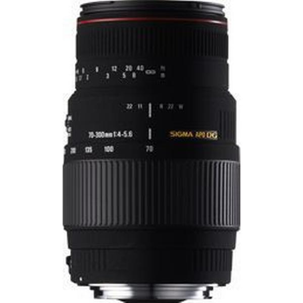 Sigma APO 70-300mm F4-5.6 DG Macro for Canon