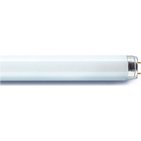 Sylvania 0001514 Fluorescent Lamp 36W G13