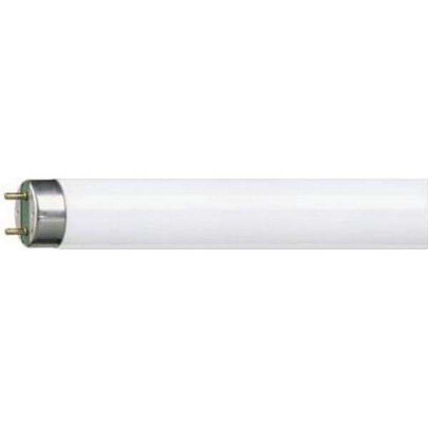 Philips Master TL-D Super 80 Fluorescent Lamp 36W G13 827