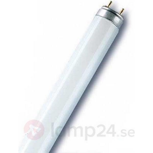Osram L Fluorescent Lamp 30W G13 77