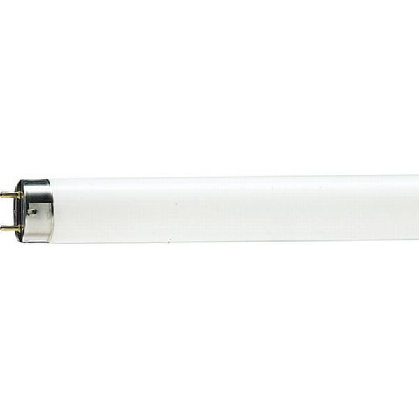 Philips Master TL-D Food Fluorescent Lamp 36W G13