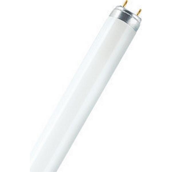 Osram Lumilux T8 ES Fluorescent Lamp 32W G13 830