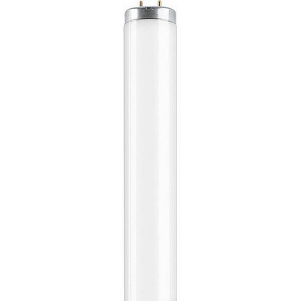 Osram L SA Fluorescent Lamp 40W G13