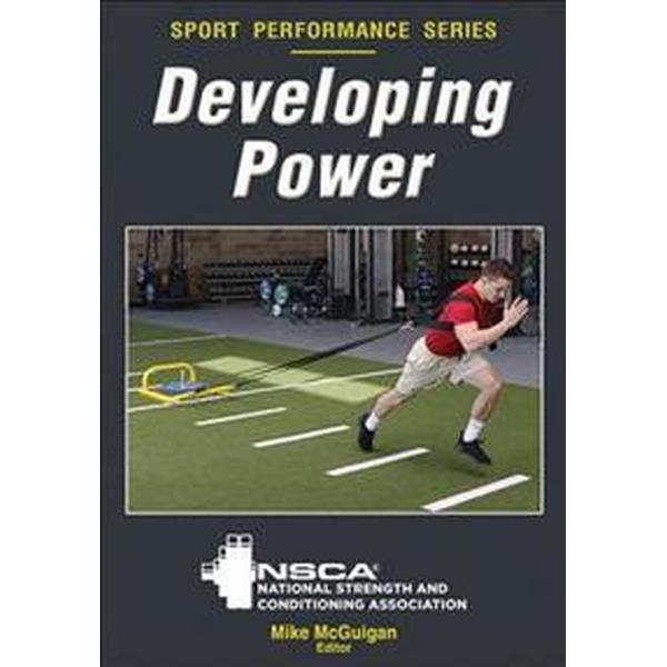 Developing Power (Pocket, 2017)