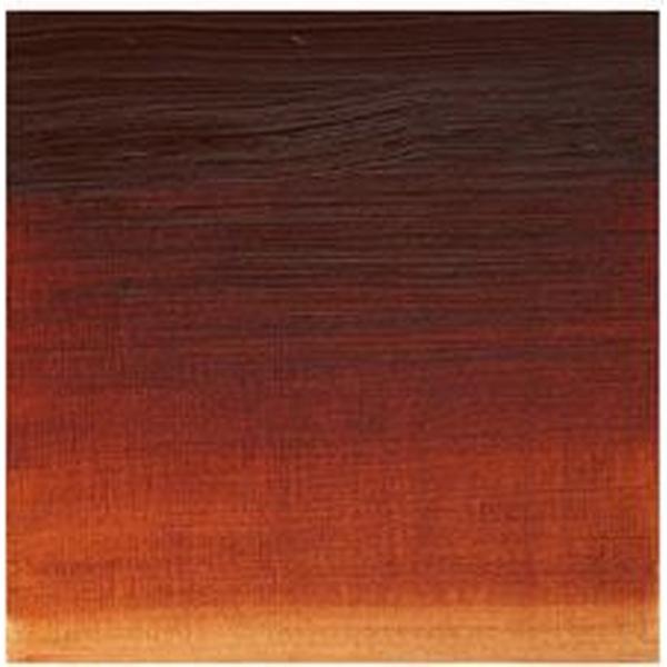 Winsor & Newton Artists Oil Color Burnt Sienna 074 200ml