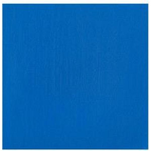 Winsor & Newton Professional Acrylic Cerulean Blue Hue 139 200ml