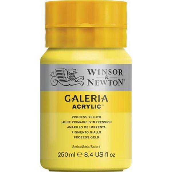 Winsor & Newton Galeria Acrylic Process Yellow 537 250ml