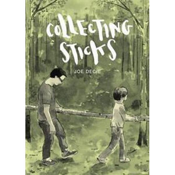 Collecting Sticks (Inbunden, 2017)