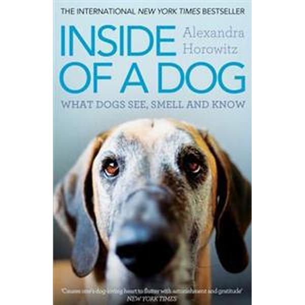 Inside of a Dog (Häftad, 2012)